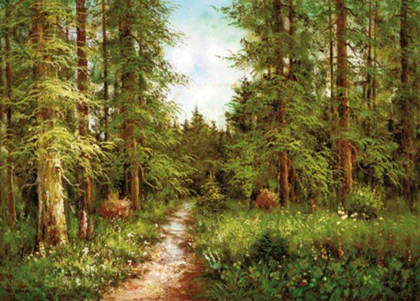 SO-70778 - Sentiero nel bosco - P. Lande
