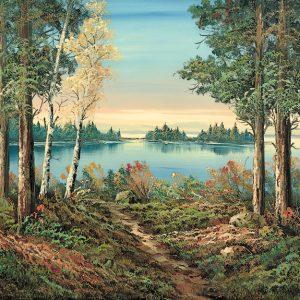 SO-71053 - Piccolo lago - R. Finnigan