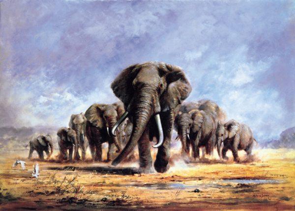 SO-71215 - La carica degli elefanti - S. Duran