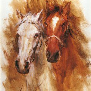 SO-71862 - Cavallo bianco e cavallo sauro - E. Rosso