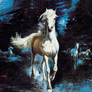 SO-73347 - Cavallo bianco nella notte - V. Bauer