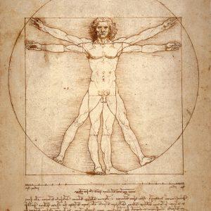 SO-73458 - L'Uomo vitruviano - L. Da Vinci