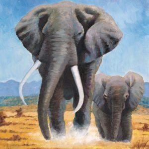 SO-73672 - Carica di elefanti - A. Zuccotti