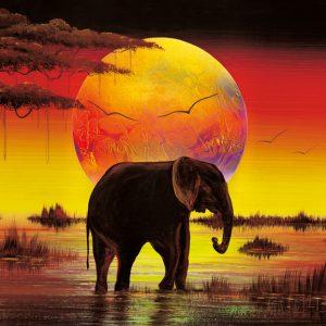 SO-73906 - Grande elefante solitario - Rajco