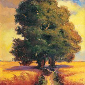 SO-74053 - Grandi alberi - G. Colombo