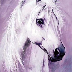 SO-74296 - Testa di cavallo bianco - Rajco
