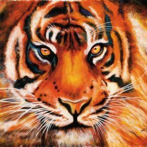 SO- 74448 - La tigre - Rajco
